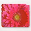Pink Gerbera Daisy Mousepad mousepad