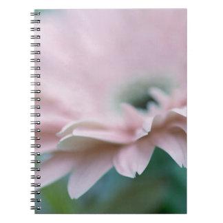 Pink Gerbera Daisy Spiral Notebooks