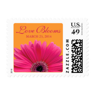 Pink Gerbera Daisy Orange Love Blooms Wedding Postage