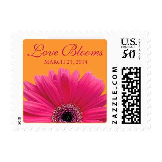 Pink Gerbera Daisy Orange Love Blooms Wedding Postage