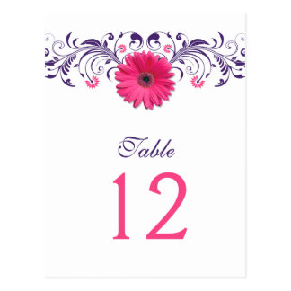Pink Gerbera Daisy Purple Floral Table Number Card Postcard