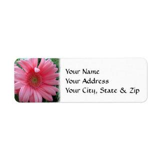 Pink Gerbera Daisy Return Address Label