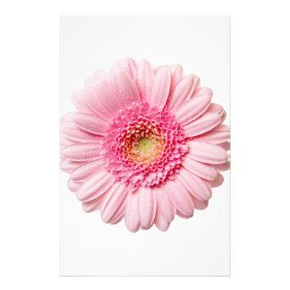 Pink Gerbera Daisy Stationery Paper
