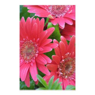 Pink Gerbera Daisy Stationery Design