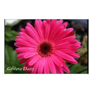 Pink Gerbera Daisy Stationery