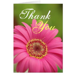 Pink Gerbera Daisy Thank You note Card