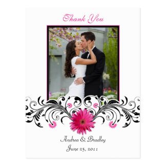 Pink Gerbera Daisy Thank You Postcard
