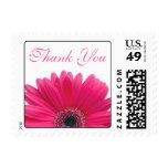 Pink Gerbera Daisy White Wedding Thank You Postage Stamp
