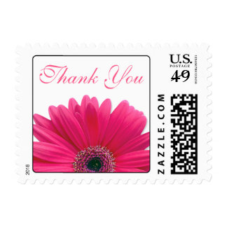 Pink Gerbera Daisy White Wedding Thank You Postage Stamp