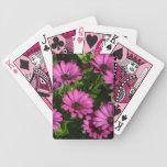 Pink Gerbera Deck Of Cards