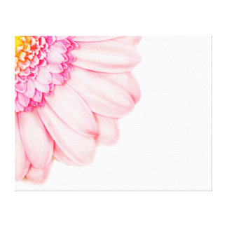 Pink Gerbera Flower Macro Nature Canvas