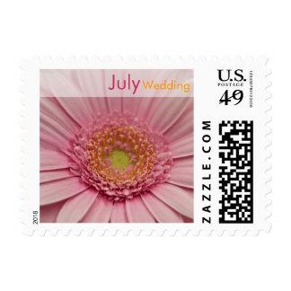 Pink Gerbera • July Wedding Stamp