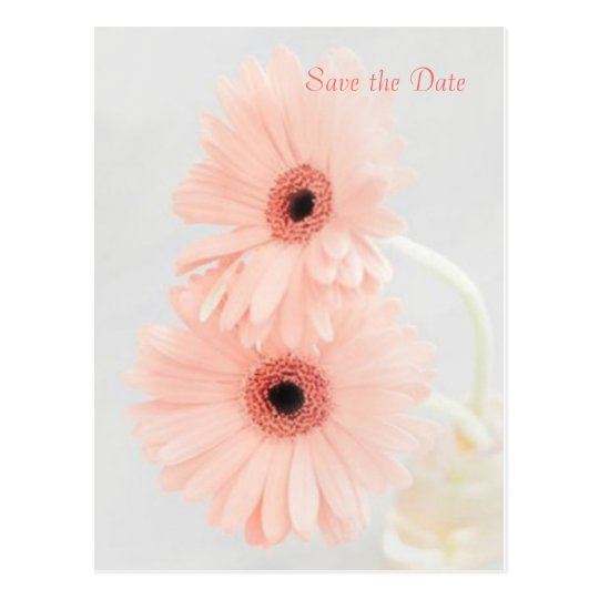 Pink Gerbera Save the Date announcement Postcard