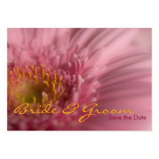 Pink Gerbera • Save the Date Mini Card