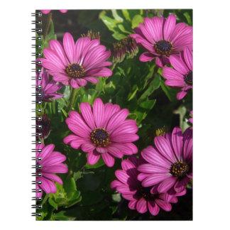 Pink Gerbera Spiral Notebooks
