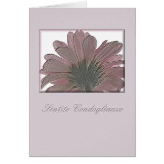 pink gerbera sympathy card italian