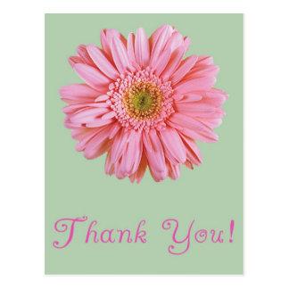 Pink Gerbera - Thank You Postcard