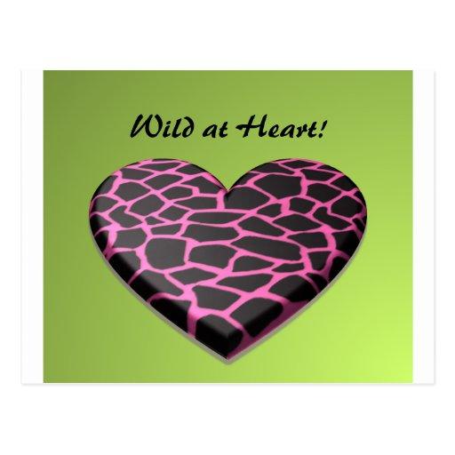 Pink Giraffe Heart Postcard