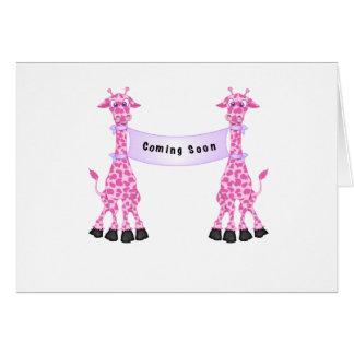 Pink Giraffes Coming Soon Card