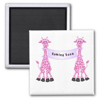 Pink Giraffes Coming Soon Refrigerator Magnets