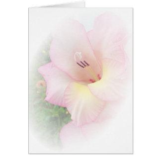 Pink gladiola card