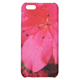 Pink Glistening stamens flowers Cover For iPhone 5C