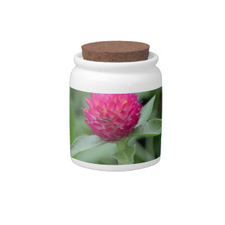 Pink Gomphrena Flower Candy Dishes