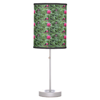 Pink Gomphrena Flower Lamps