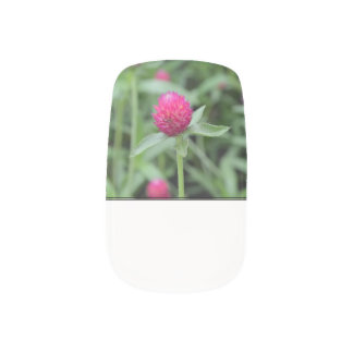 Pink Gomphrena Flower Minx ® Nail Art