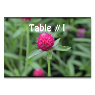 Pink Gomphrena Flower Table Card