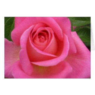 Pink Granada Rose Notecard