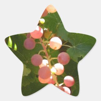Pink Grapes Star Sticker
