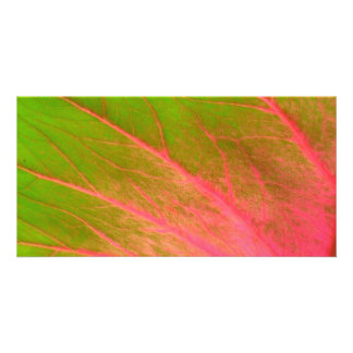 pink green leaf card