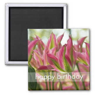 Pink & Green Variegated Tulips DSC0796 2 Inch Square Magnet