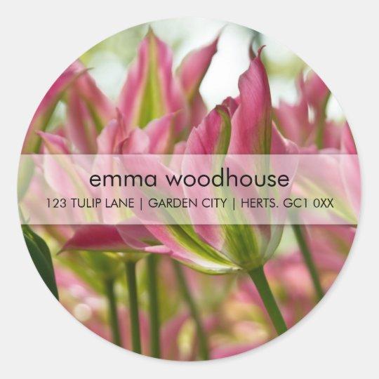 Pink & Green Variegated Tulips DSC0796 Classic Round Sticker