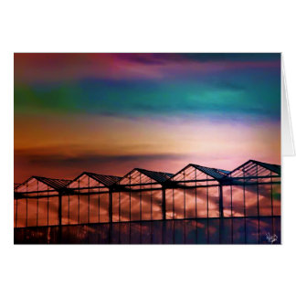 Pink Greenhouses Card