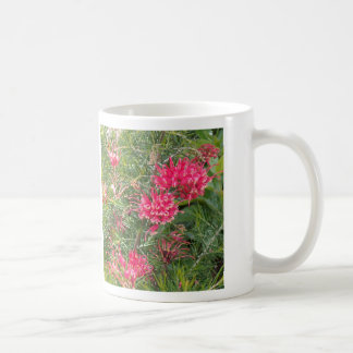 Pink Grevillea Flowers Coffee Mugs