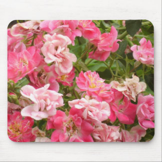 Pink Groundcover Roses Mouse Pad