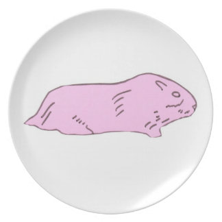 Pink Guinea Pig Plate