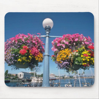 Pink Hanging flowers, Victoria flowers Mouse Pad