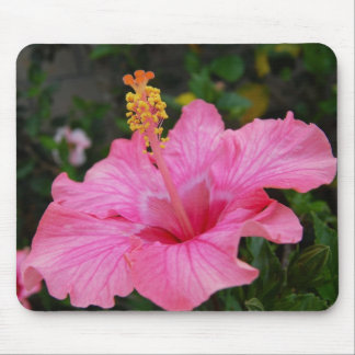 Pink Hawaii Hibiscus Mouse Pad