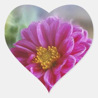 Pink Heart Dahlia Heart Sticker