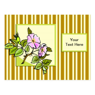Pink Hedge Rose Postcard