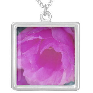 Pink Hedgehog Cactus blossom (Echinocereus Silver Plated Necklace