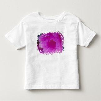 Pink Hedgehog Cactus blossom (Echinocereus T-shirt