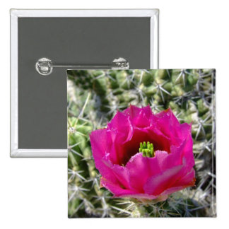 Pink hedgehog cactus flower collection pin