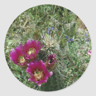 Pink Hedgehog Flowers Round Stickers