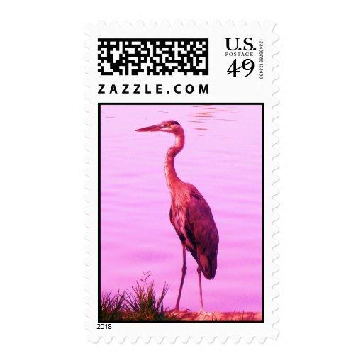 Pink Heron Egret Postage