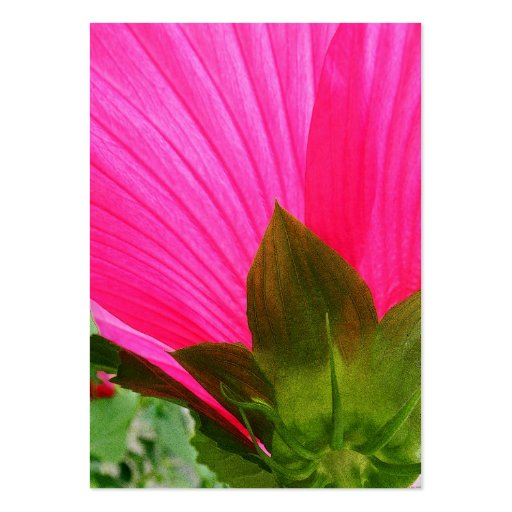 Pink Hibiscus Abstract Photo ATC Card Large Business Cards (Pack Of 100)