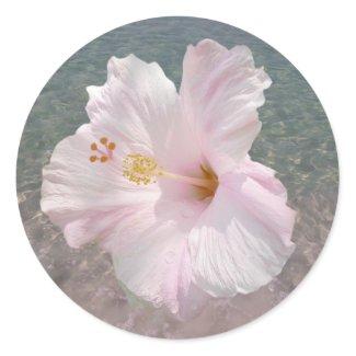 Pink Hibiscus and Ocean Water Sticker sticker